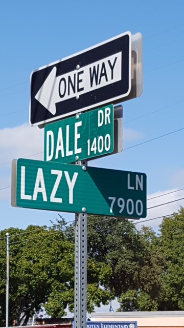 Lazydale